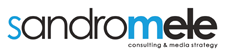 Logo Sandro Mele Consulting